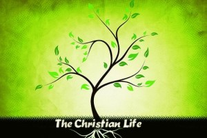 Understanding The Christian Way Of Life